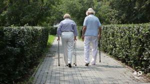 Impacts On Elderly